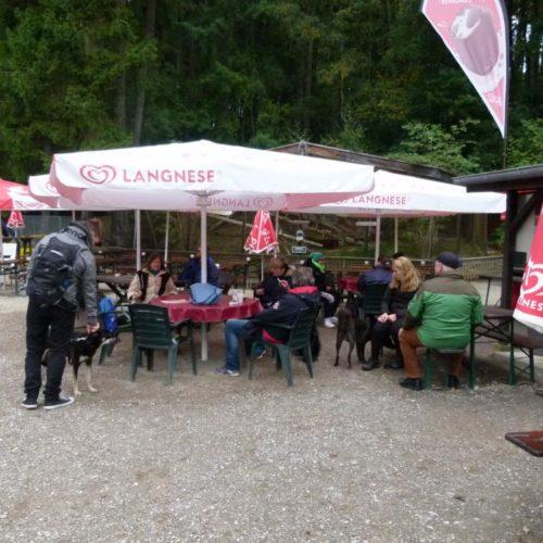 K1024_Sightseeing-Rheinboellen4