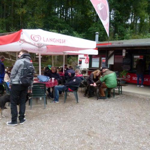 K1024_Sightseeing-Rheinboellen5