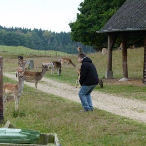K1024_Sightseeing-Rheinboellen9